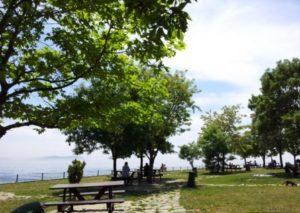 Парк Фенербахче в Кадыкёй fenerbahçe
