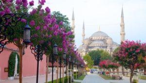 Sultanahmet cami Мечеть Султанахмет