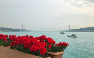 Del Mare Ristorante Стамбул летом куда сходить