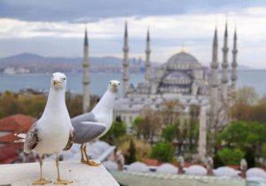 В Стамбул на два дня Istanbul