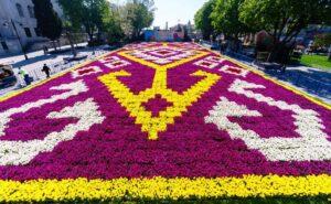 Ковер из тюльпанов в Султанахмет