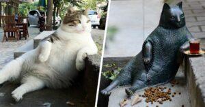 Памятник коту Томбили, Стамбул