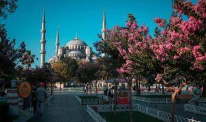 Стамбул в июне