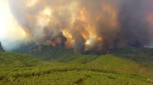 Пожары в Турции 2021